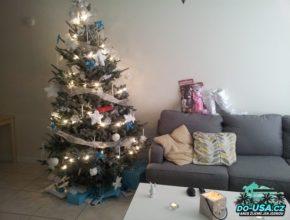 První Vánoce v Americe, v novým domově :-)