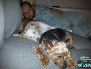 Nejvíc unavení byli samozřejmě pejsci :)