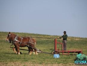 Místo traktoru koně :-)